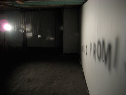 My installation, Unlimited Promise, in the basement.
