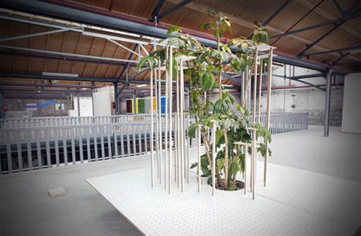 Mathieu Mercier. Structure de mélaminé blanc pour plante, Loraine Bodewes Fotografie. Source: Observantonline.nl.