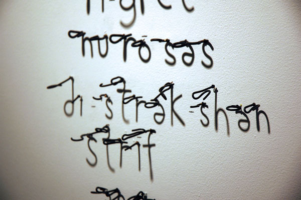 Meryl Pataky had a nice pair of installed wire works, whose shadows spelled positive and negative words phonetically.