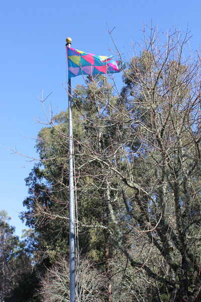 The people's choice: the first official Irrational Exuberance Flag is raised!