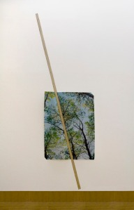 Letha Wilson, Ghost of a Tree, 2012. Digital print on vinyl, drywall, wood, wood column, 10 × 8 × 14 feet (image size 13 ¾ x 8 feet). Installation view at Bemis Center for Contemporary Art, Omaha, NE.