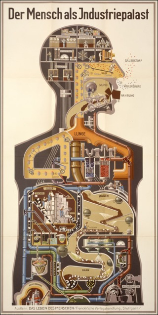 Fritz Kahn (author), Der Mensch als Industriepalast (Man as Industrial Palace)  Stuttgart, 1926. Chromolithograph. // Source: National Library of Medicine.