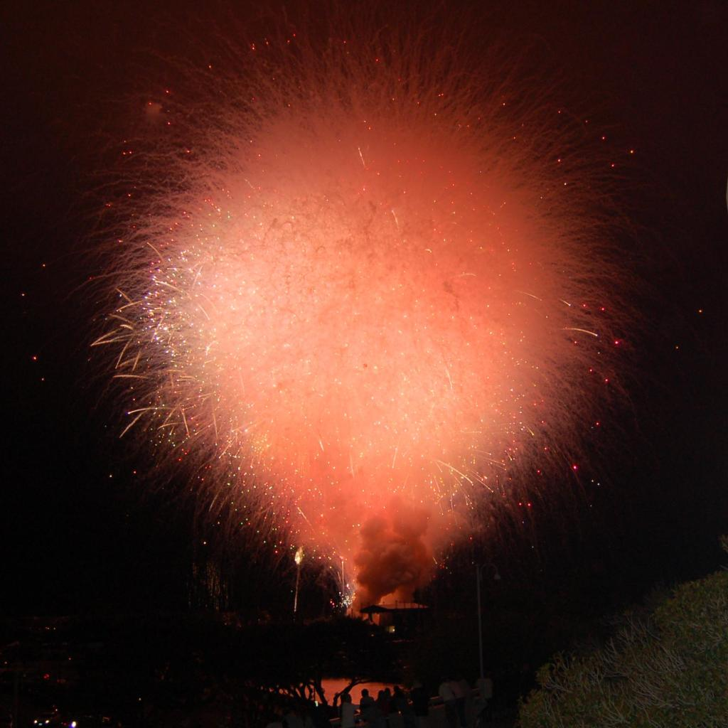 san diego 2012 fireworks display